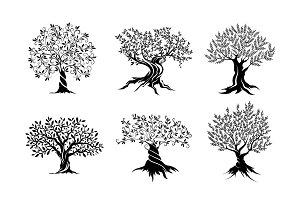 Olive trees set vector illustration