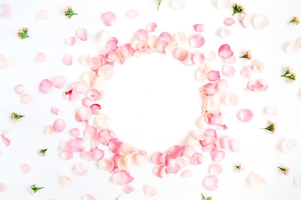 Frame of Rose Petals