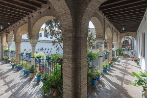 Andalusian patio with plants