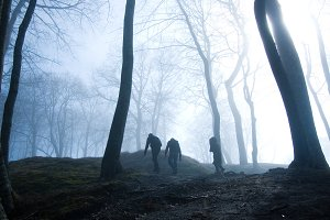 People in foggy dark forest.