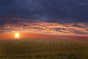 Sunset over field.