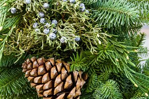 Fir boughs with berries and cone
