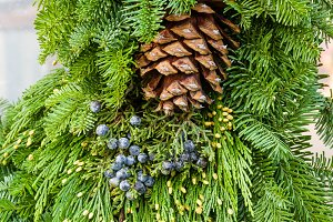 Boughs with cone and berries