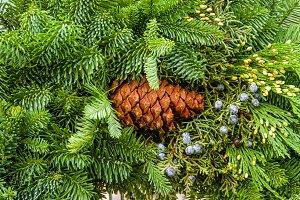 Evergreen arrangement with berries