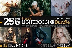 SALE 256 New Lightroom Preset Bundle