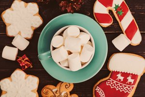 Cup of marshmallows with gingerbread cookies
