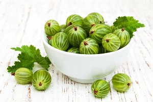 Gooseberries with leaves