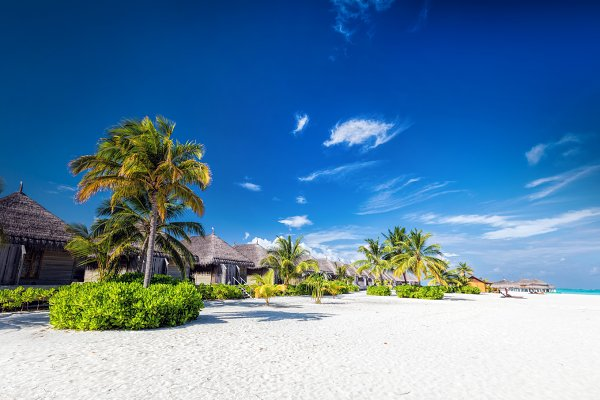 Beach with coconut palms and villas…