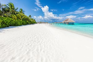 Wide sandy beach on a tropical island in Maldives. Palms and water lodge