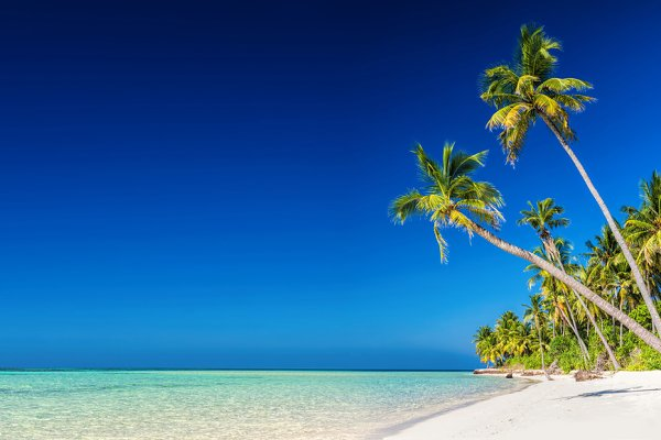 Panorama of tropical island with co…