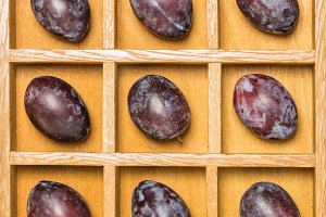 Prune plums in a shadow box