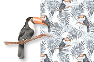 Toucan + Pattern. Watercolor 2
