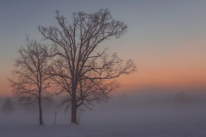 01 Winter Foggy Sunset 1