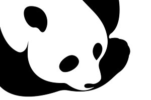 Vector of a panda design