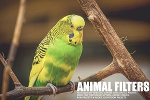 17 Animal Lightroom Presets