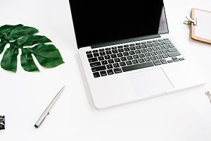Laptop & palm leaf