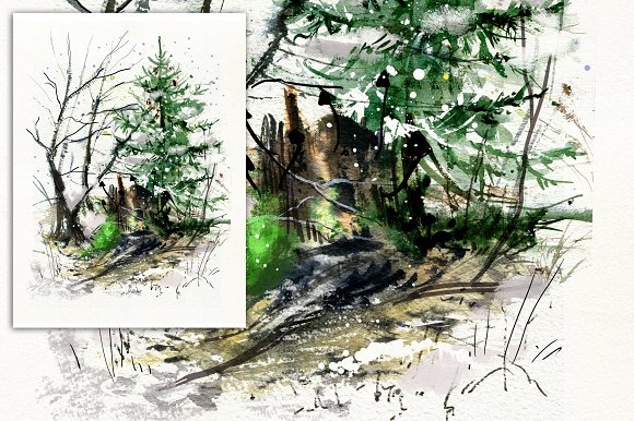 Forest Watercolor Illustration