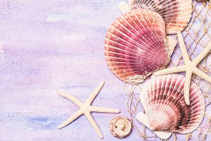 Seashells and starfishes background.
