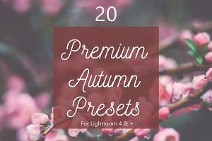 Pack 20 Premium Autumn Fall Presets