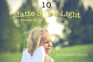 Pack 10 LR Matte Spirit Presets