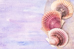Pink seashells background.