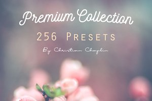 Premium Pack 256 Presets Lightroom
