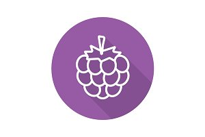 Blackberry icon. Vector