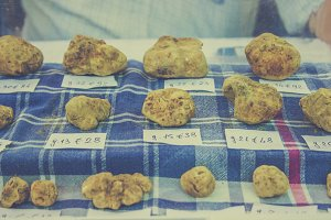 White truffles for sale