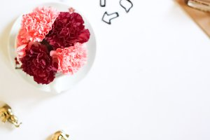 Carnations + bubble paperclips