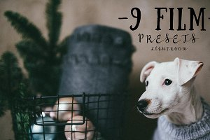 9 FILM presets for lightroom
