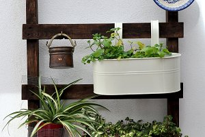 original planter with plants