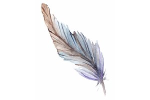 Watercolor isolated feather vector