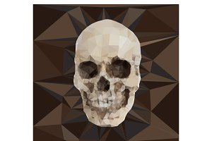 Geometric triangular of human skull
