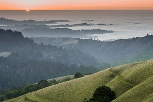 Northen California Nature