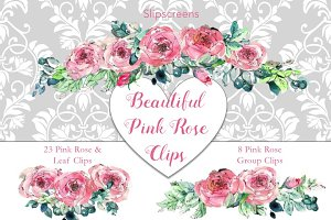 Beautiful Pink Rose Design Elements