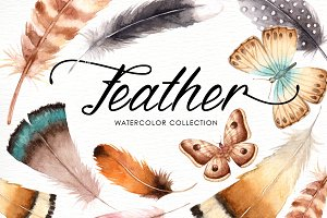 Feather Watercolor Collection