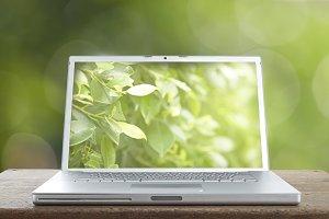 laptop on the green bokeh