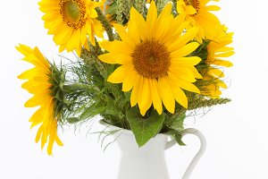 Sunflowers in a jug