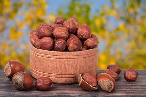 hazelnuts in a wooden bowl on  dark board with blurred garden background
