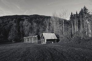 Alpine Cottages and Kozolec - Autumn