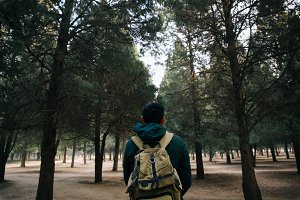 Young traveler trekking into the woods with backpack along the path