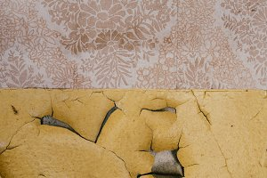 Old Wallpaper with Yellow Plastering