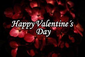Dark Elegant Valentine Day Poster