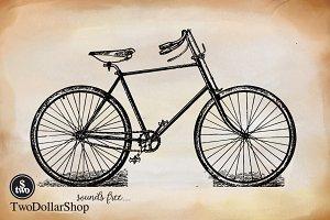 2 Cycle-003