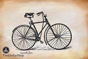 2 Cycle-011