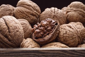 walnuts photo texture in the shell
