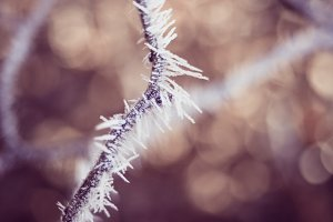 swirley bokeh ice crystal