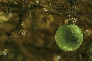 Christmas bauble in tree