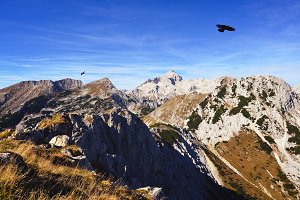 Ravens in the Sky with Mountains
