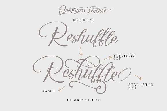 Reshuffle Script Font Set Fonts Creative Market